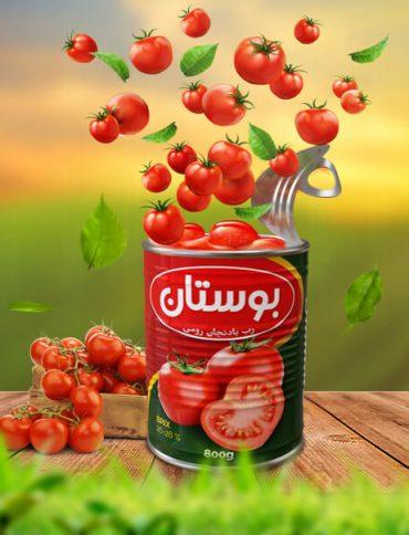 Boustan Tomato Paste