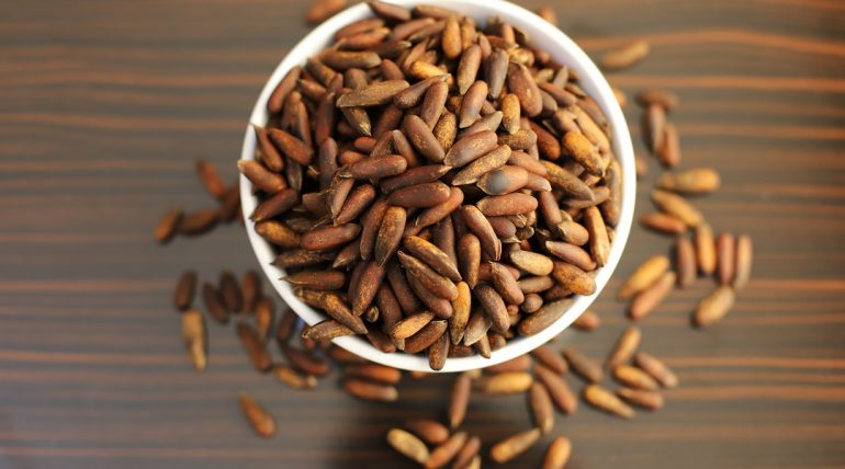 Afghan pine nuts for export