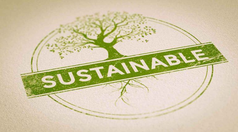 How to choose sustainable foods?