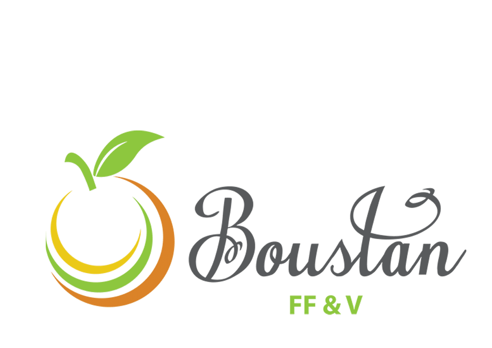 Boustan FF and V